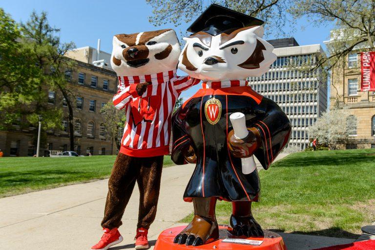 "Bucky mascot standing next to Bucky on Parade ""Graduation Bucky"" statue."